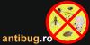 ANTIBUG - dezinsectie si deratizare - servicii de dezinfectie