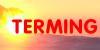TERMING - instalatii termice - centrale termice - pompe caldura - panouri solare