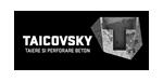 TAICOVSKY - Tăiere fir diamantat și carotare diamantată