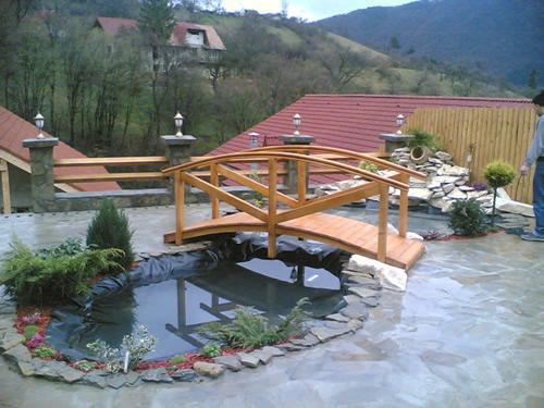 Sumar plant amenajari exterioare amenajari gradina for Amenajari piscine