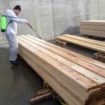 Aplicare Bios Wood parchet